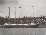Five-masted schooner GEORGE E. BILLINGS at anchor, Port Blakely, Washington, ca. 1904.