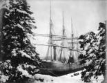 Four-masted bark ALSTERNIXE at anchor, Washington, ca. 1900