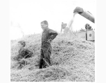 Boys playing in straw, Kiwanis Threshing Bee, Tacoma, n.d.