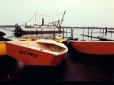 Colored boats near the Norton Avenue Boat Ramp, with the sternwheeler W.T. PRESTON in the...