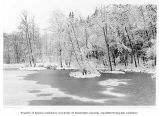 Frozen pond and snow-covered trees at Bloedel Reserve, Bainbridge Island, February 1990