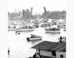 Boats on Portage Bay on Opening Day of Boating Season showing Montlake Bridge in background,...