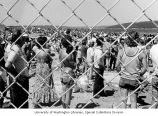 Looking through a fence at a crowd watching the hydroplane races at Sand Point, Seattle,...