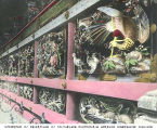 Carvings at temple or shrine, Nikko, ca. 1921