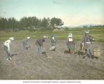 Farm workers preparing soil and planting seeds, Japan, ca. 1921
