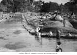 Washing clothes in a river or canal, India, ca. 1920