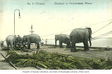 Elephants at work on dock, Penang, ca. 1909