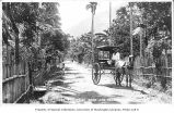 Horse drawn buggy on road, Philippines, ca. 1913