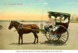 Caramata, or, horse drawn buggy, Manila, n.d.