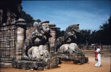 Animal sculptures flanking front entrance of Surya (Sun) Temple, Konark, Orissa, India, ca. 13th...