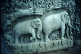 Close up of elephants, from Descent of the Ganges panel in Mahabalipuram, Tamil Nadu, India, ca....