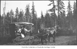 Man and woman in horse-drawn carriage, near Redmond, ca. 1910