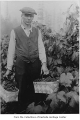 Adolph Hennig with baskets of grapes in Hennig's Vineyard, Bellevue, October 1925