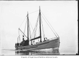 Alten, a diesel powered fishing boat, at sea, n.d.