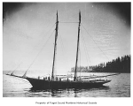 Bonita, a sailing schooner, at sea, n.d.