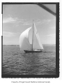 Alatola, a sailing sloop, at sea, n.d.