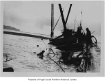 Macray, a diesel powered fishing boat, wrecked, view of deck toward bow in sand in the Gulf of...