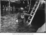 Diver entering the water, n.d.