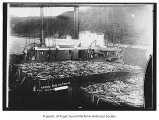 Equator, a steam fishing boat, next to barges loaded with salmon, n.d.