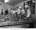 Workers processing oysters, 1935