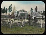Sami herdsmen and reindeer in Woodland Park, Seattle, 1898