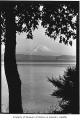 Mount Rainier from across Lake Washington, Seattle, ca. 1935