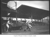 Seattle Giants player batting in Dugdale Park, Seattle, ca. 1920