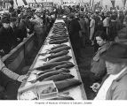 Salmon on display during Ray's Boat House salmon derby, Seattle, 1941