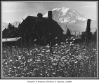 Old barn, Mount Rainier in distance, Black Diamond, 1970