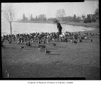 Man feeding birds at Green Lake, Seattle, 1945