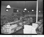 Atlantic & Pacific supermarket interior at 85th and Greenwood, Seattle, 1940