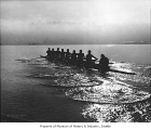University of Washington varsity crew team on Lake Washington, Seattle, 1979