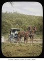 Horse-drawn buggy, probably at Willowmoor Farm, Redmond, n.d.