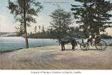 Horse and buggy on Washington Park Boulevard, Seattle, ca. 1900