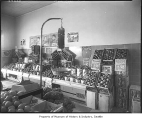 Apples on display, Seattle, ca. 1943
