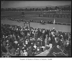 Spectators at Longacres Park watching race, Renton, 1941