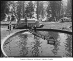 Trout rearing ponds at Seward Park, Seattle, 1948
