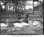Girls with swans at Woodland Park Zoo, Seattle, 1937