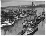 Fishing boats on Seattle's waterfront, 1937