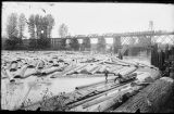 Log jam on the Snohomish River, November 1892