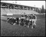 Football team at the University of Washington, ca. 1916