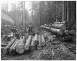 Loading logs, ca 1916