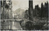 Big log, North Bend Lumber Co., Washington, ca. 1910