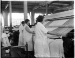 Women working at pressing machine in commercial laundry, January 1935