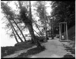 Paths along the lakeshore at Madrona Park, ca. 1912