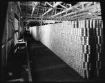Storeroom at Pacific American Fisheries salmon canning factory, 1910