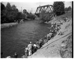 Kids' fishing derby at Renton, June 12, 1949