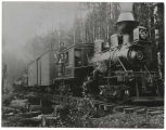 Locomotive and log train near Hobart, Washington, ca. 1915