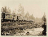 Bunkhouses at Polson Logging Company camp, ca. 1918
