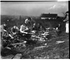 Boy Scouts roasting elk meat over a campfire, January 30, 1948